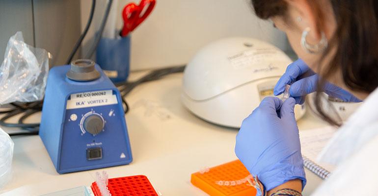 El centro tecnológico Eurecat y la UIB colaboran para acelerar la obtención de vacunas y fármacos contra la Covid-19